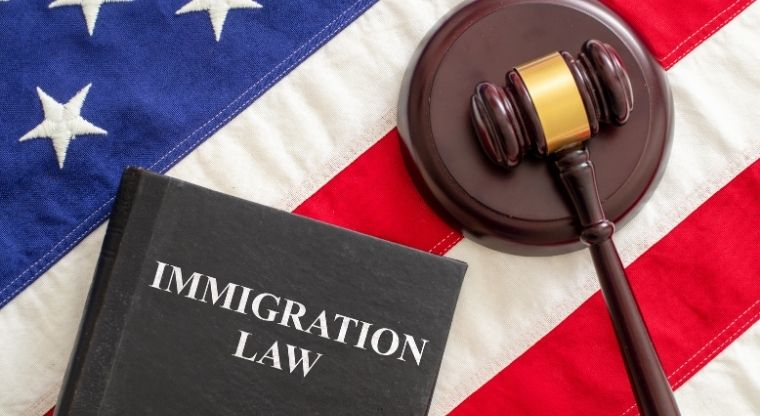 Do you feel Too much illegal immigration is a serious problem?